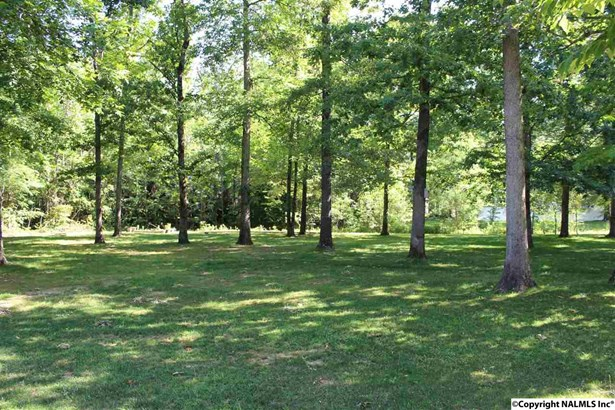 Residential/Single Family - TONEY, AL (photo 3)