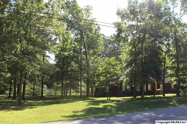Residential/Single Family - TONEY, AL (photo 4)