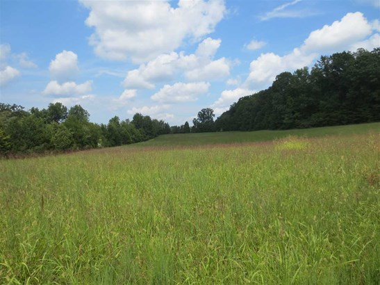 Lots and Land - Decatur, TN (photo 1)