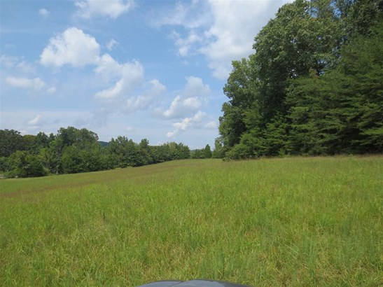 Lots and Land - Decatur, TN (photo 5)