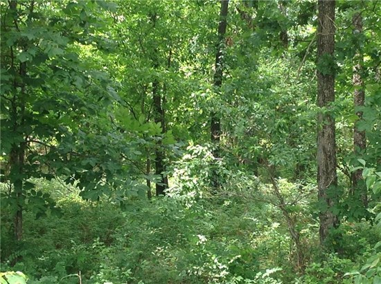 Lots and Land - Siloam Springs, AR (photo 4)
