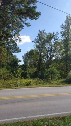 Lots and Land - Ringgold, GA (photo 1)