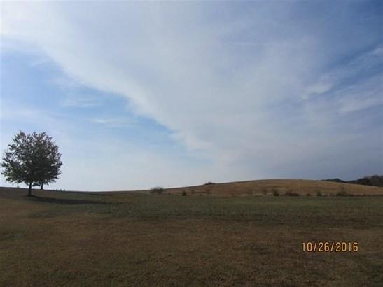 Lots and Land - Delano, TN (photo 3)