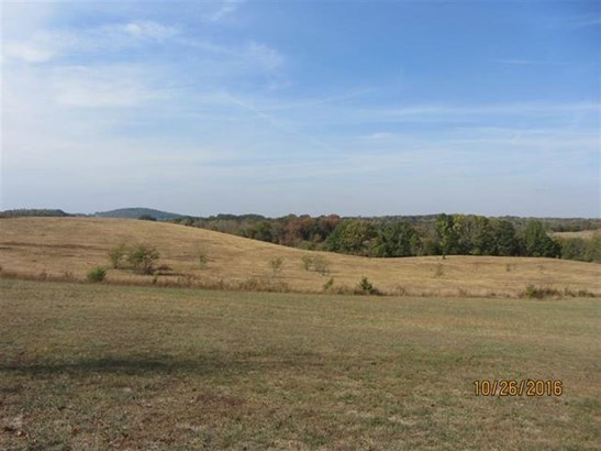 Lots and Land - Delano, TN (photo 4)