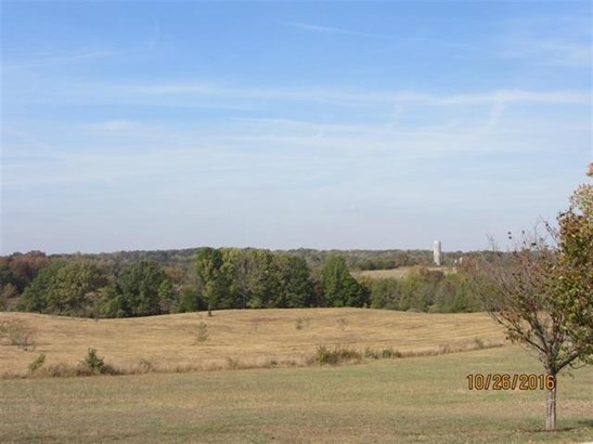 Lots and Land - Delano, TN (photo 5)