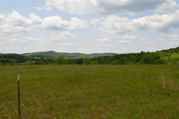 Lots and Land - Liberty, TN (photo 2)