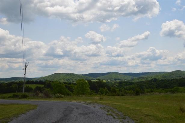 Lots and Land - Liberty, TN (photo 3)