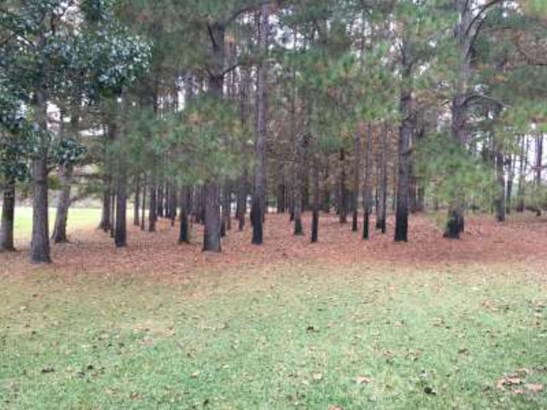 Residential/Single Family - Brookhaven, MS (photo 4)