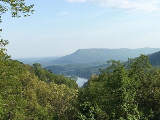 Residential/Single Family - Signal Mountain, TN (photo 1)