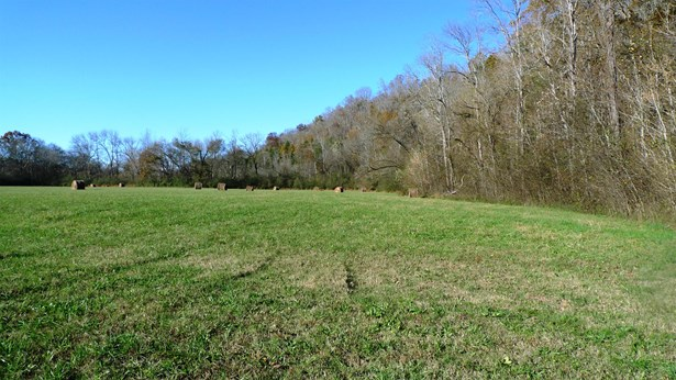 Lots and Land - Lynnville, TN (photo 2)