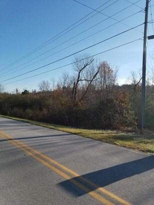 Lots and Land - Ringgold, GA (photo 3)