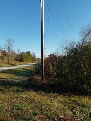 Lots and Land - Ringgold, GA (photo 4)