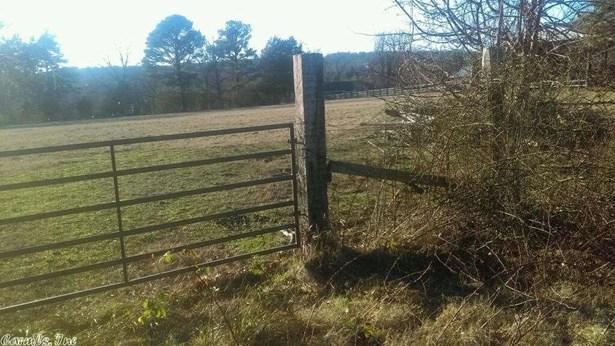 Lots and Land - Pangburn, AR (photo 2)