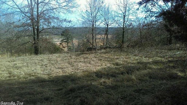 Lots and Land - Pangburn, AR (photo 3)