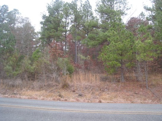Lots and Land - Pearcy, AR (photo 3)