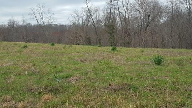 Lots and Land - Silver Point, TN (photo 3)