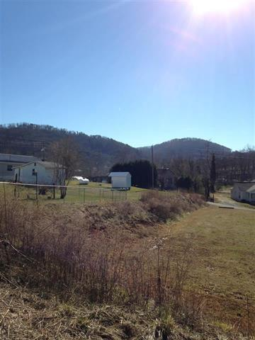 Lots and Land - Tellico Plains, TN (photo 4)