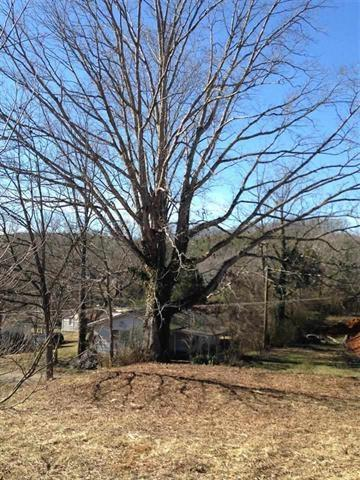 Lots and Land - Tellico Plains, TN (photo 5)