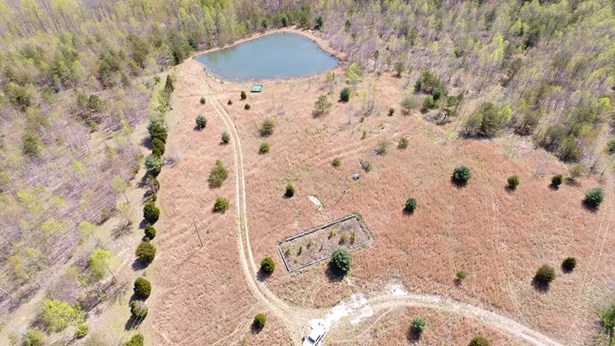 Lots and Land - Sunbright, TN (photo 3)