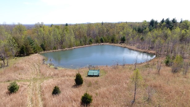 Lots and Land - Sunbright, TN (photo 4)