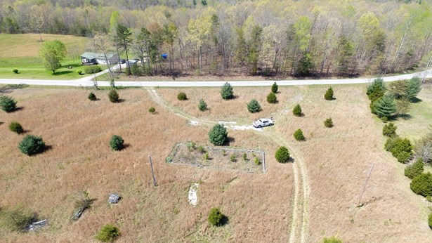Lots and Land - Sunbright, TN (photo 5)