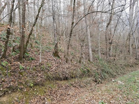 Lots and Land - Jamestown, TN (photo 1)