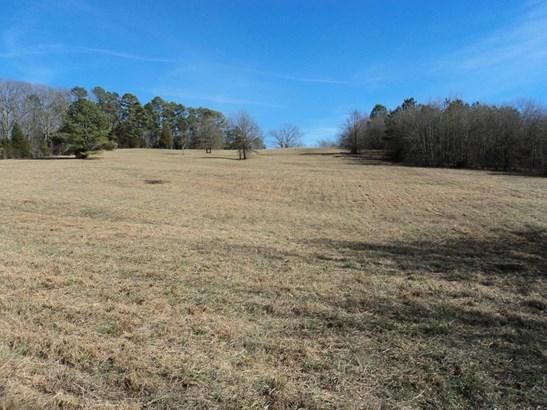 Lots and Land - Charleston, TN (photo 2)
