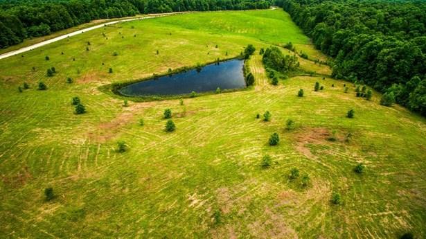 Lots and Land - Mc Ewen, TN (photo 2)