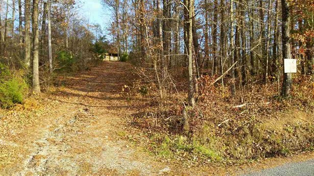 Lots and Land - Calhoun, TN (photo 1)