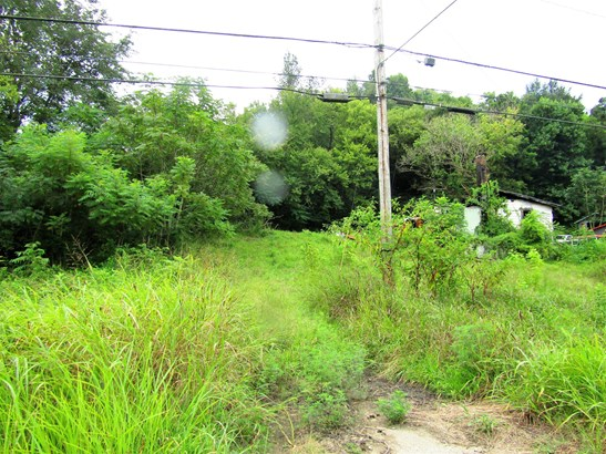 Lots and Land - Mount Pleasant, TN (photo 4)