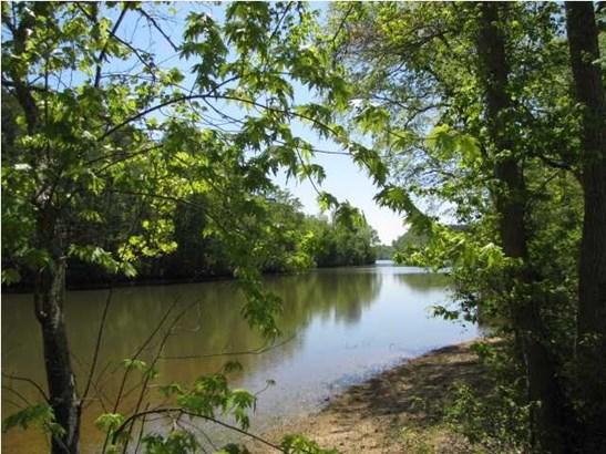 Lots and Land - Calhoun, TN (photo 2)
