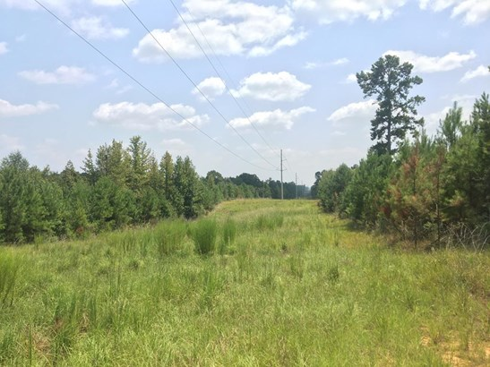 Lots and Land - Gloster, MS