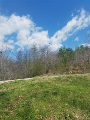 Lots and Land - Centerville, TN (photo 1)
