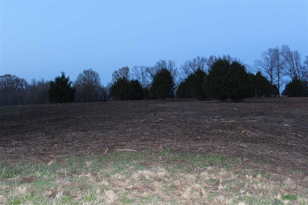 Lots and Land - Friendship, TN (photo 1)