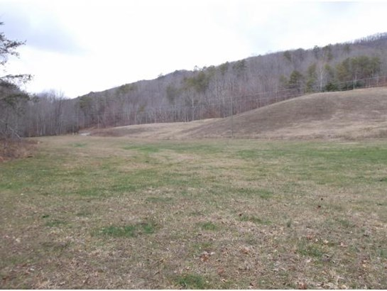 Lots and Land - Rogersville, TN (photo 5)