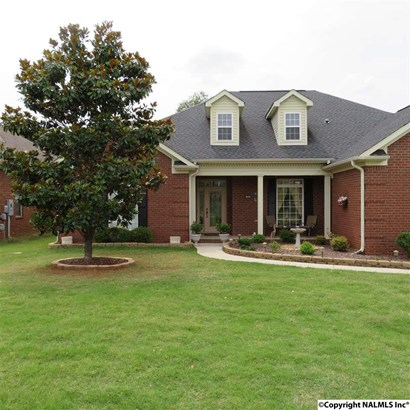 Residential/Single Family - MERIDIANVILLE, AL (photo 4)