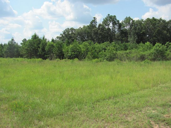 Lots and Land - Hattiesburg, MS (photo 5)