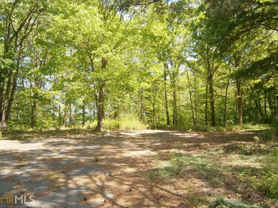 Lots and Land - Cartersville, GA (photo 4)