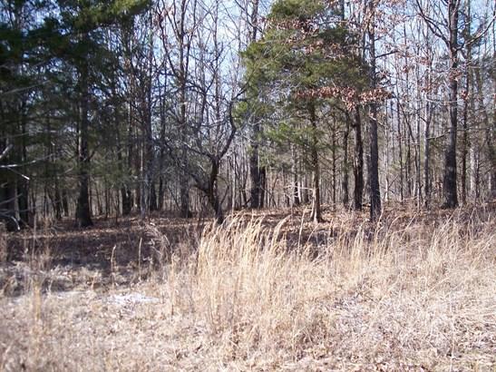 Lots and Land - Charlotte, TN (photo 1)
