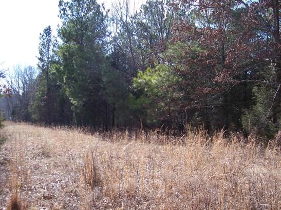 Lots and Land - Charlotte, TN (photo 2)