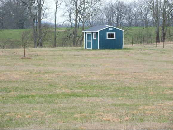 Lots and Land - Rogersville, TN (photo 3)