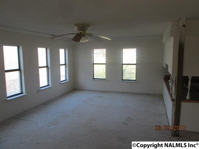 Residential/Single Family - WOODVILLE, AL (photo 3)