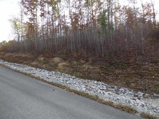 Lots and Land - Rockwood, TN (photo 2)