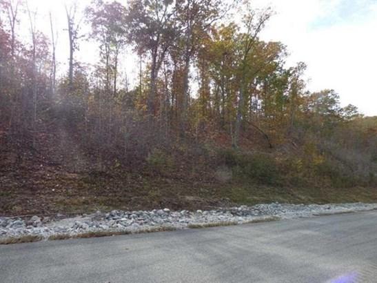 Lots and Land - Rockwood, TN (photo 3)