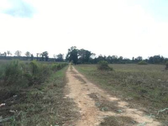 Lots and Land - Jayess, MS (photo 3)