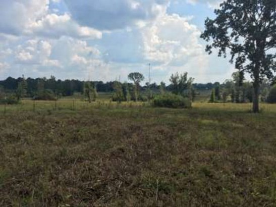 Lots and Land - Jayess, MS (photo 5)