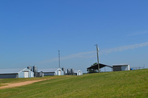 Lots and Land - Gentry, AR (photo 2)