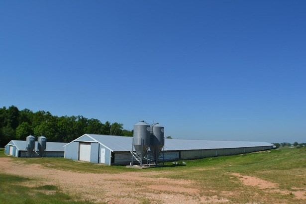 Lots and Land - Gentry, AR (photo 3)