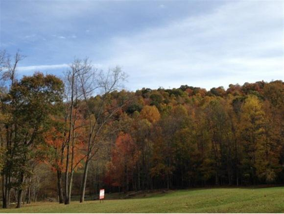 Lots and Land - Roan Mountain, TN (photo 1)
