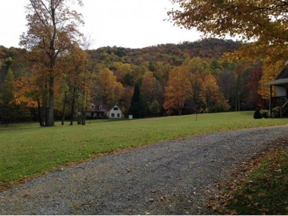 Lots and Land - Roan Mountain, TN (photo 2)